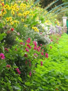 Arboretum photos 086