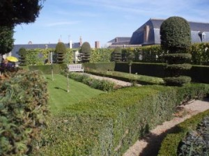 Gardenlanguage7
